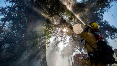 Firefighters spray water onto a tree while fighting the Maria Fire in Ventura County, California, on November 1.