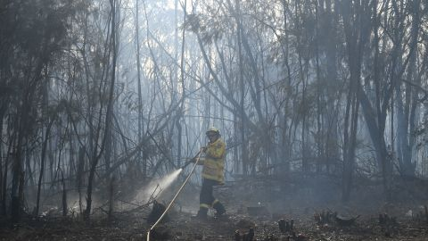 A firefighter doses a bushfire in the residential area of Sydney on Tuesday.