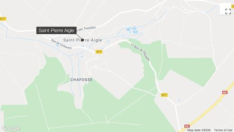 A woman has been killed by dogs in a French forest, prosecutors said.