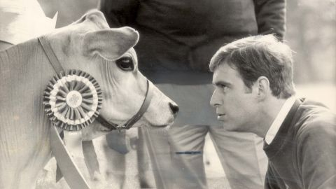 The prince is face to face with a cow during a royal tour of Canada in 1985.