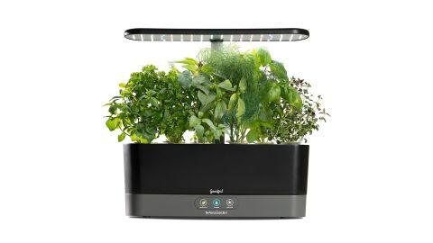 "<a href=""https://www.macys.com/shop/product/goodful-by-aerogarden-harvest-slim-countertop-garden-gourmet-herbs-seed-kit?ID=6795429&CategoryID=7554&swatchColor=Black"" target=""_blank"" target=""_blank""><strong>AeroGarden SmartGarden ($129.99, originally $189.99; macys.com) </strong></a><br />"