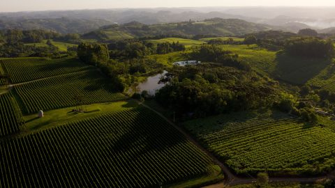 <strong>Pinto Bandeira, Brazil:</strong> The Família Geisse vineyard is increasingly known for its sparkling wine.