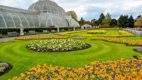 Greenhouse in Kew botanical gardens in London
