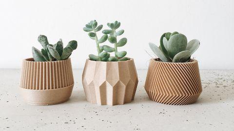 Set of 3 small succulent plant pots