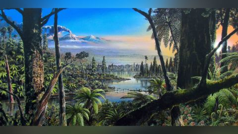 This painting shows what Antarctica may have looked like 90 million years ago. It had a temperate swampy rainforest.