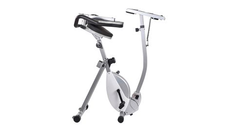 Laptop Workout Desk and Recumbent Bike