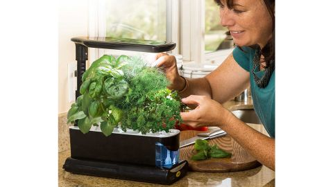 AeroGarden Sprout with Gourmet Herb Seed Kit