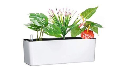 Elongated Self Watering Planter Box with Coconut Coir Soil