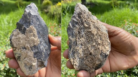 This image shows both sides of the 1.4 million-year-old bone handaxe made from the femur of a hippopotamus. It was most likely crafted by ancient human ancestors like Homo erectus.