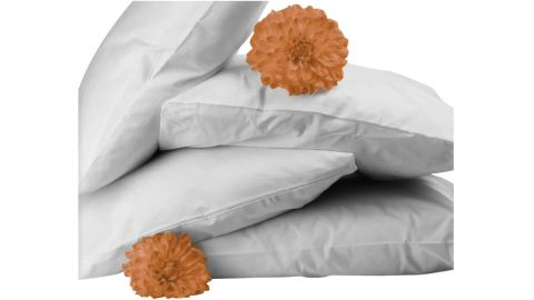 Bicor Featherfull Feather and Down Standard Pillows, 4-Pack