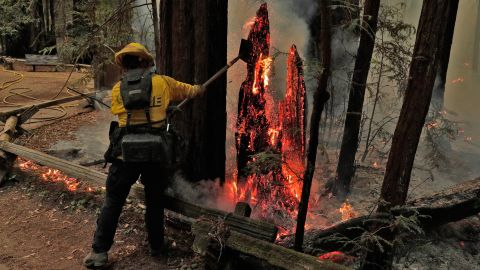 Firefighter Juan Chavarin pulls down a burning tree trunk in Guerneville, California, on August 25.