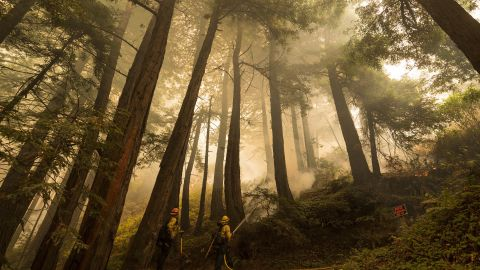 A firefighter shoots an incendiary device during a back burn to help control the Dolan Fire in Big Sur, California, on September 11.