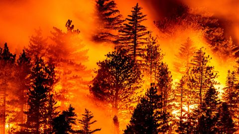 The Bobcat Fire burns in Angeles National Forest, north of Monrovia, California, on September 11.