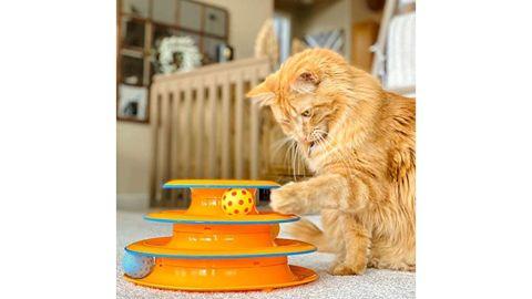 Petstages Cat Tracks Cat Toy