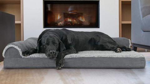 Furhaven Pet Plush Orthopedic Sofa