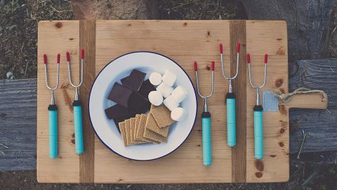 Extendable Rotating Marshmallow Roasting Sticks, Set of 5