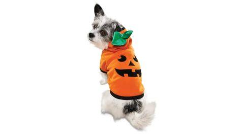 Bootique Jack O' Lantern Dog Hoodie