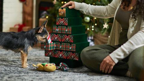 Frisco Holiday 12 Days of Christmas Advent Calendar