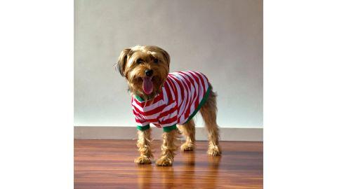 PeachFuzzGifts Dog Pajamas