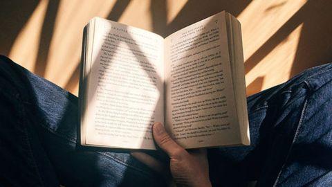 Ultimate Creative Novel and Screen Writing Academy Bundle