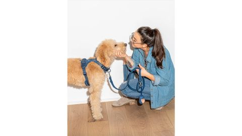 Durable Dog Leash