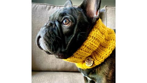 The Cold Snap Snood