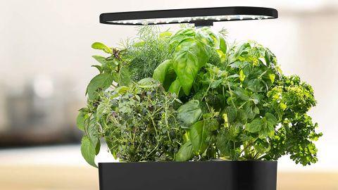 AeroGarden Harvest Indoor Hydroponic Garden