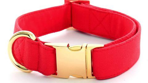 The Foggy Dog Ruby Dog Collar