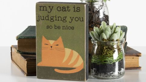 Primitives by Kathy 'Judging You' Box Sign