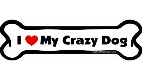 Imagine This Company 'I Love My Crazy Dog' Magnet