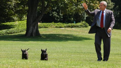 George W. Bush is joined by his Scottish terriers Barney and Miss Beazley as he walks on the South Lawn of the White House in 2006.
