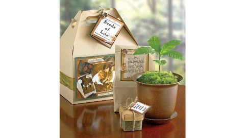 Seeds of Life Tree Kit