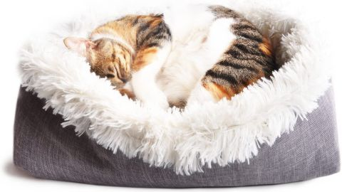 4Claws Furry Pet Bed and Mat