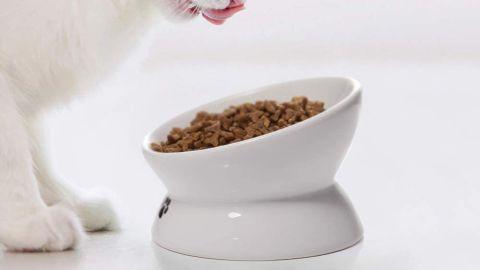 Y YHY Elevated Cat Bowl