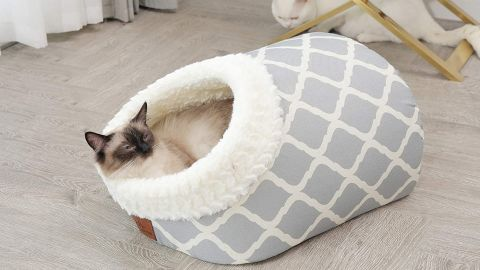 Miss Meow Cat Bed