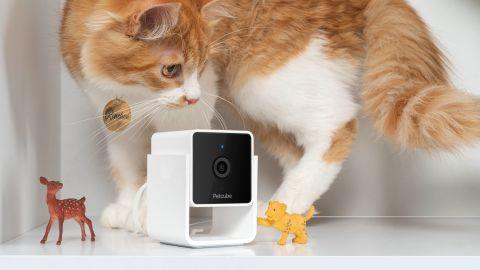 Petcube Pet Monitoring Camera