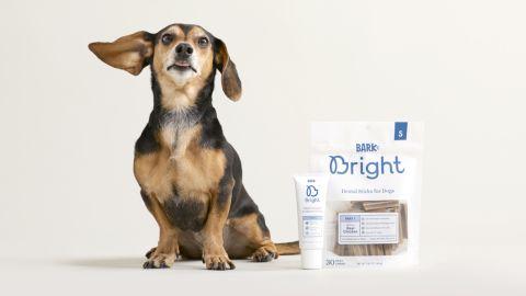 Bark Bright