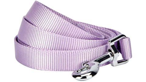 Blueberry Pet Essentials Classic Dog Leash