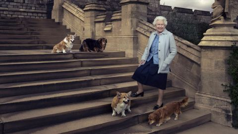 The Queen poses with four of her dogs on the private grounds of Windsor Castle in April 2016.