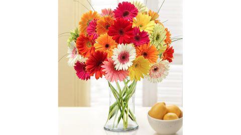 Happy Gerbera Daisies, 24 Stems Bouquet