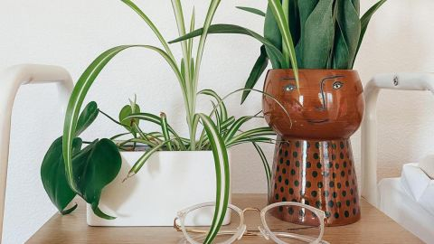 Opalhouse Stoneware Family Planter
