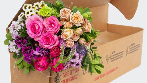 Bloomsy Deluxe Bouquet Subscription