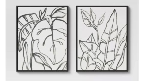 """Project 62 """"Botanical Sketch"""" Framed Wall Canvas"""