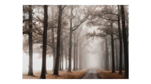"""""""Misty Road"""" Wrapped Canvas Painting Print"""