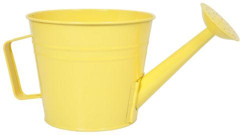 August Grove Machias Watering Can