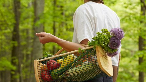17 Best Gardening Gifts Of 2021 Cnn, What To Gift Someone Who Loves Gardening