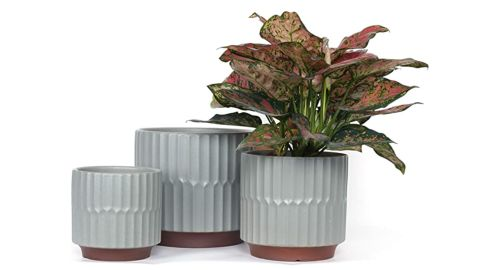 Fengson Large Plant Pots With Drainage Holes