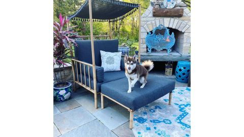 Opalhouse Calla Canopy Patio Accent Chair