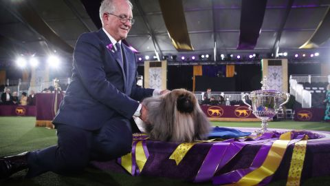 Wasabi, a Pekingese of East Berlin, Pennsylvania is posed with his owner and handler David Fitzpatrick after winning the Best in Show at the 145th Westminster Kennel Club Dog Show at Lyndhurst Mansion in Tarrytown, New York, U.S., June 13, 2021. REUTERS/Mike Segar
