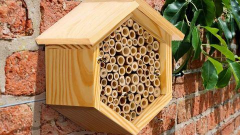 Maison Abeille Mason Bee House
